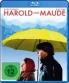 Cover zu Harold und Maude