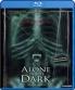 Cover zu Alone In The Dark: Directors Cut