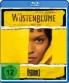Cover zu Wüstenblume: Cine Project