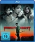 Cover zu Fright Night