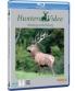 Cover zu Jagd in Berleburg/Hunting at Berleburg - Hunters Video 74